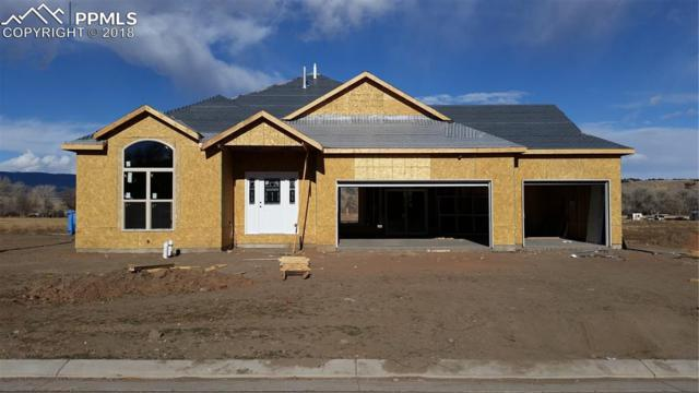 120 Rose Drive, Florence, CO 81226 (#8081193) :: The Kibler Group