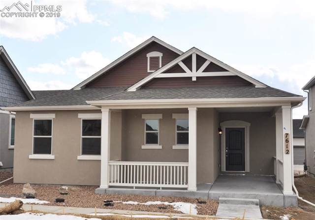 7612 Grizzly Rose Way, Colorado Springs, CO 80923 (#8266617) :: The Daniels Team