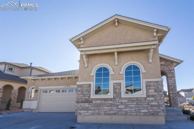 5799 Thurber Drive, Colorado Springs, CO 80924 (#9827952) :: Venterra Real Estate LLC