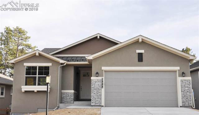 1525 Catnap Lane, Monument, CO 80132 (#1390629) :: 8z Real Estate