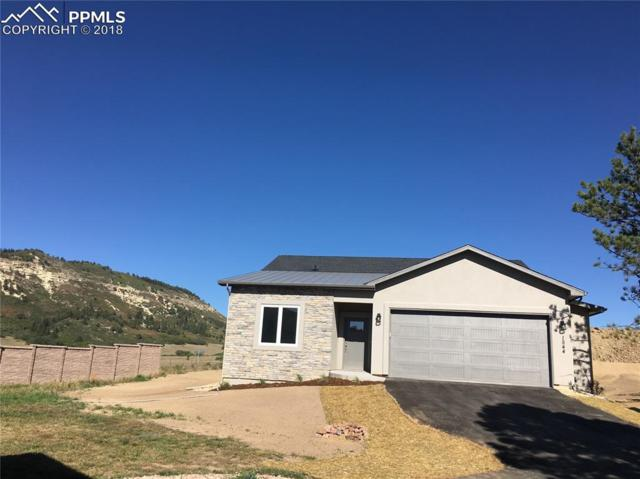 1544 Piney Hill Point, Monument, CO 80132 (#1428304) :: Action Team Realty