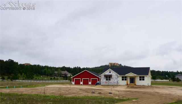 603 Pioneer Haven Point, Palmer Lake, CO 80133 (#3033207) :: Action Team Realty