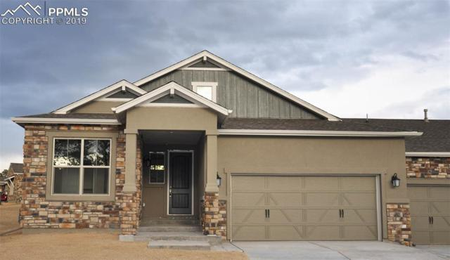 16495 Woodward Terrace, Monument, CO 80132 (#5459032) :: Fisk Team, RE/MAX Properties, Inc.
