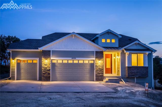 18370 Lower Lake Road, Monument, CO 80132 (#7091234) :: 8z Real Estate