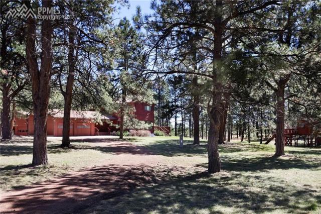 16955 W Goshawk Road, Colorado Springs, CO 80908 (#7437124) :: 8z Real Estate