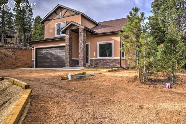 71 Mount Elbert Drive, Divide, CO 80814 (#7605177) :: Fisk Team, RE/MAX Properties, Inc.