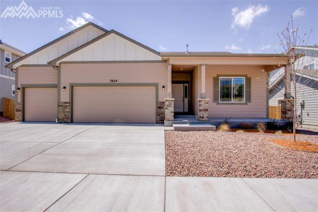 7824 Pinfeather Drive, Fountain, CO 80817 (#7937846) :: The Treasure Davis Team