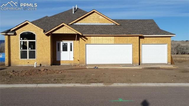 120 Rose Drive, Florence, CO 81226 (#8081193) :: Action Team Realty