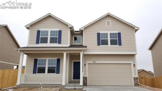7251 Silver Moon Drive, Colorado Springs, CO 80923 (#9653672) :: The Daniels Team