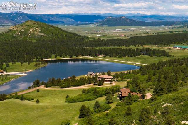 4409 Triple Eagle Trail, Larkspur, CO 80118 (#9920742) :: 8z Real Estate