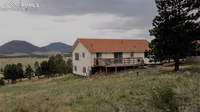 21 Peak Drive, Guffey, CO 80820 (#1120073) :: CC Signature Group