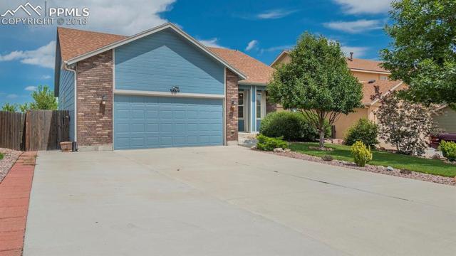 3869 Roan Drive, Colorado Springs, CO 80922 (#2043243) :: Harling Real Estate