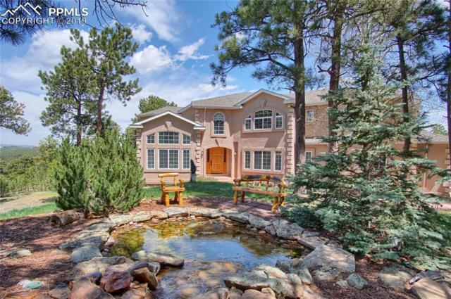 17547 Colonial Park Drive, Monument, CO 80132 (#2084777) :: Tommy Daly Home Team