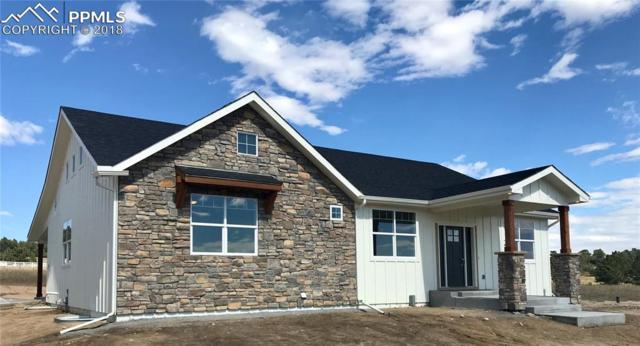 603 Pioneer Haven Point, Palmer Lake, CO 80133 (#3033207) :: Colorado Home Finder Realty