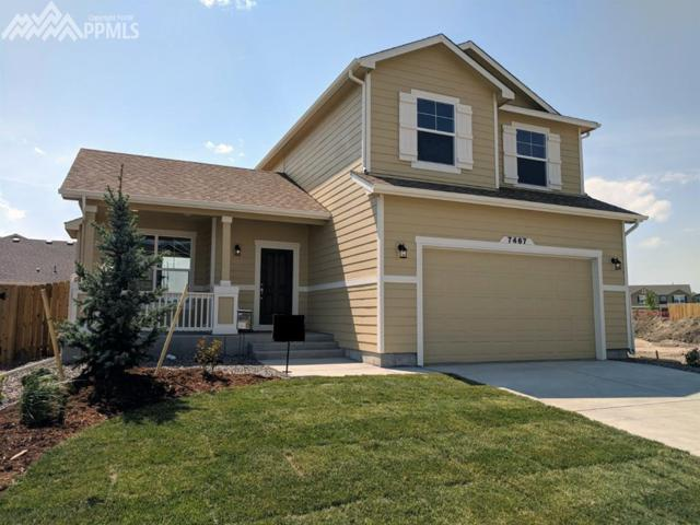 7467 Cat Tail Drive, Colorado Springs, CO 80923 (#3616116) :: Fisk Team, RE/MAX Properties, Inc.