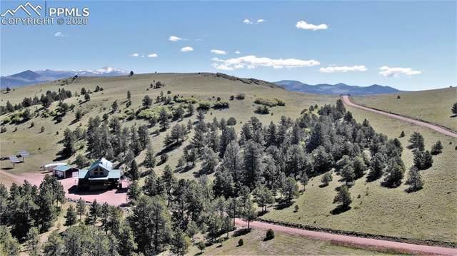 506 Sheep Springs Lane, Canon City, CO 81212 (#4606907) :: 8z Real Estate