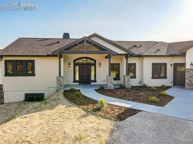 14894 Snowy Pine Point, Colorado Springs, CO 80908 (#4771469) :: Finch & Gable Real Estate Co.
