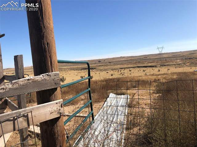 21270 High Stakes View, Fountain, CO 80817 (#7285498) :: Action Team Realty