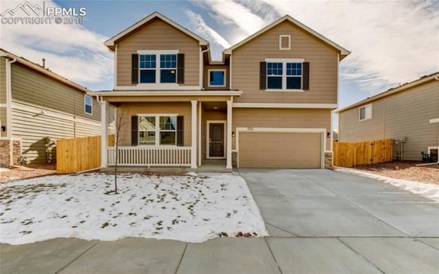 7211 Silver Moon Drive, Colorado Springs, CO 80923 (#9154255) :: The Daniels Team