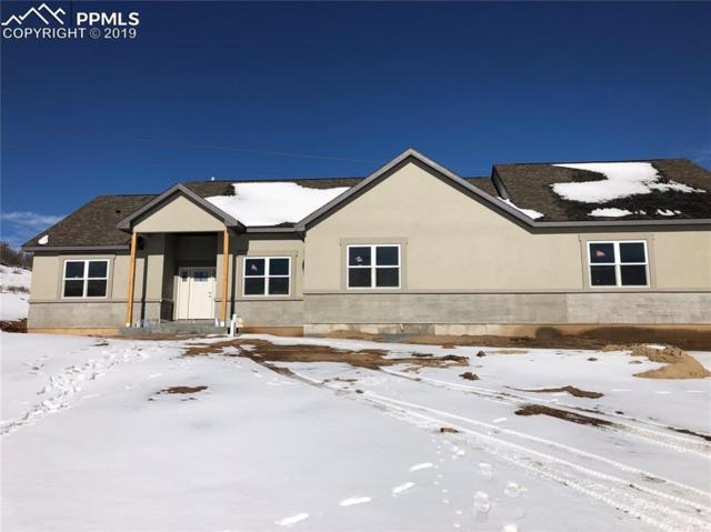 2822 Waterfront Drive, Monument, CO 80132 (#9263885) :: Action Team Realty