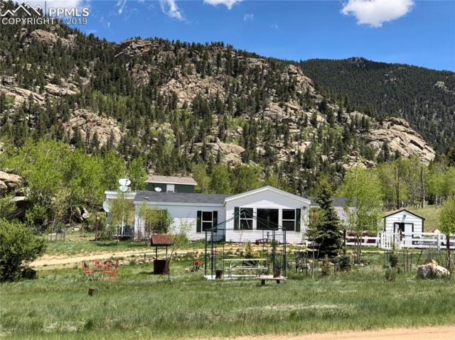 69 Turquoise Way, Lake George, CO 80827 (#1840824) :: The Daniels Team