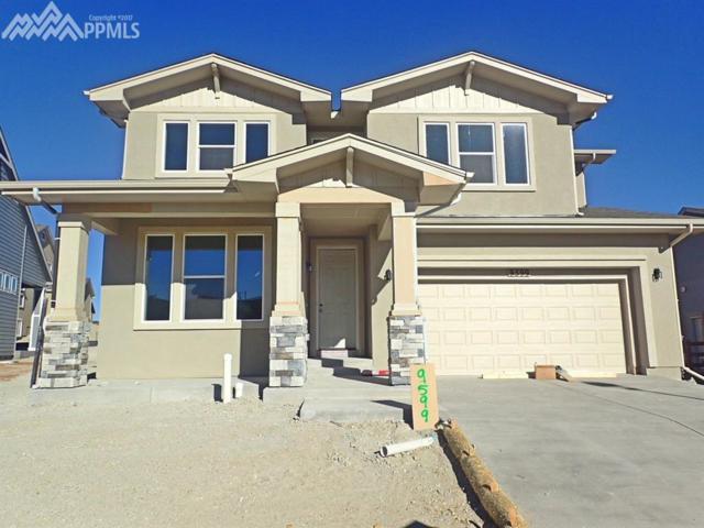 9599 Tutt Boulevard, Colorado Springs, CO 80924 (#4824151) :: 8z Real Estate