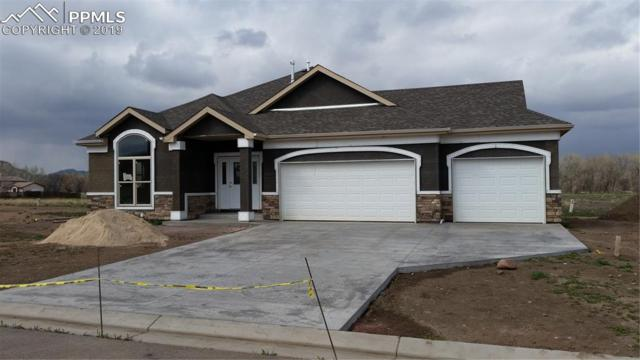 120 Rose Drive, Florence, CO 81226 (#8081193) :: Tommy Daly Home Team