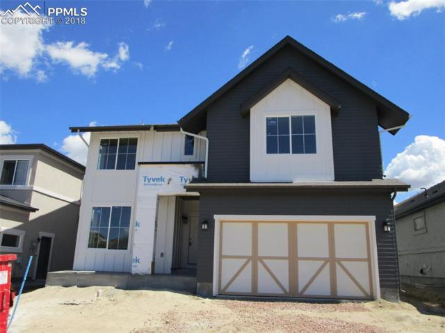 11524 Spectacular Bid Circle, Colorado Springs, CO 80921 (#1135236) :: Action Team Realty