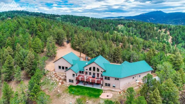 252 Running Elk Point, Divide, CO 80814 (#9870303) :: Jason Daniels & Associates at RE/MAX Millennium