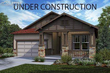 4076 Fortune Lane, Castle Rock, CO 80109 (#1016930) :: Tommy Daly Home Team