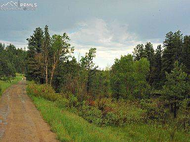 TBD Hicks Canyon, Weston, CO 81091 (#1099596) :: Tommy Daly Home Team
