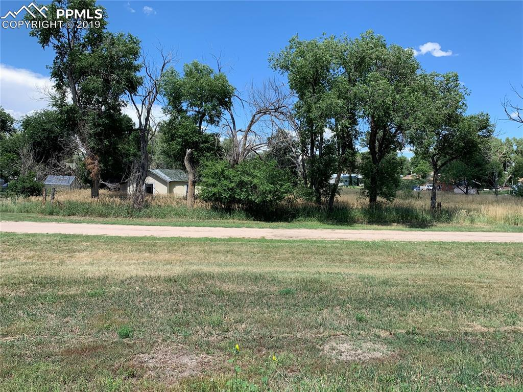 37047 Cameron Avenue - Photo 1