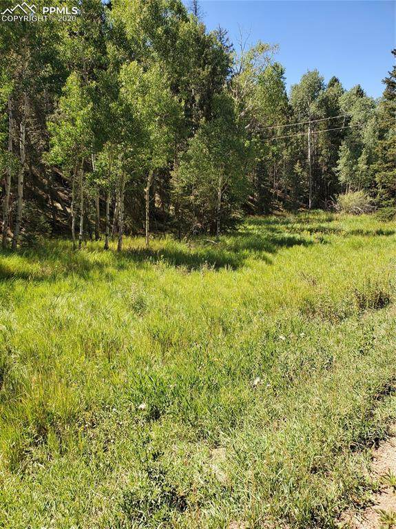 502 Spring Valley Lane, Florissant, CO 80816 (#1125086) :: The Kibler Group