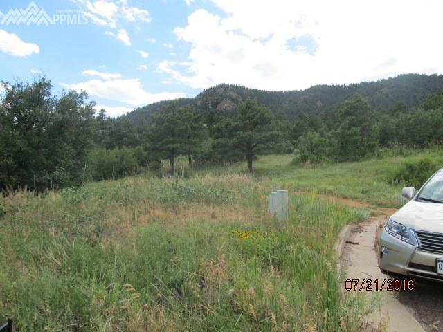 2365 Pegasus Park View, Colorado Springs, CO 80906 (#1134655) :: 8z Real Estate