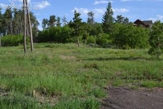 2948 Ivey Drive, Larkspur, CO 80118 (#1309665) :: 8z Real Estate