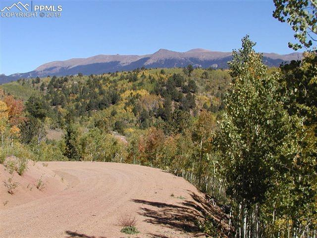 TBD Climax Drive, Cripple Creek, CO 80813 (#1310929) :: Jason Daniels & Associates at RE/MAX Millennium