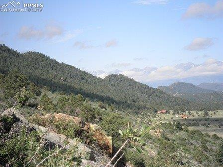 12060 County 255 Road, Westcliffe, CO 81252 (#1499498) :: Compass Colorado Realty