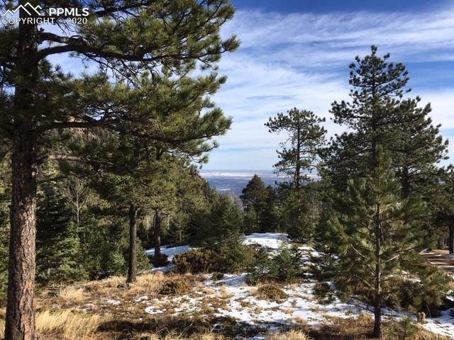 027 Waterfall Loop, Manitou Springs, CO 80829 (#1580684) :: CC Signature Group
