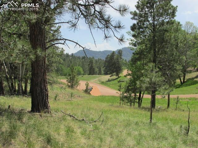 1778 Southpark Road, Florissant, CO 80816 (#1628136) :: The Peak Properties Group