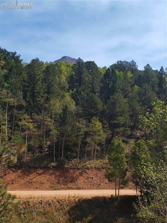 170 Valley Road, Divide, CO 80814 (#1781877) :: The Daniels Team