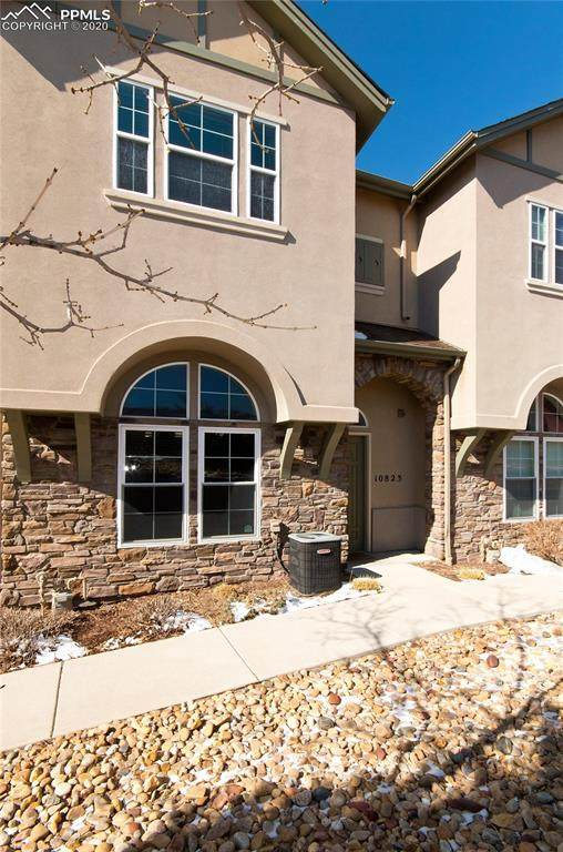 10823 Tincup Creek Point, Colorado Springs, CO 80908 (#1829905) :: Tommy Daly Home Team