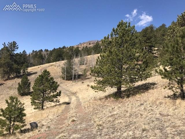 County 861 Road, Victor, CO 80860 (#1854295) :: 8z Real Estate
