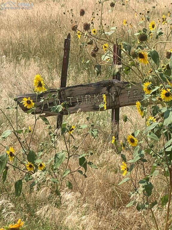 505 Wild Turkey Trail, Canon City, CO 81212 (#1887597) :: Springs Home Team @ Keller Williams Partners