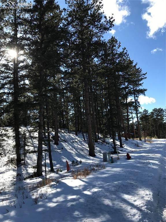 635 Meadowlark Lane - Photo 1