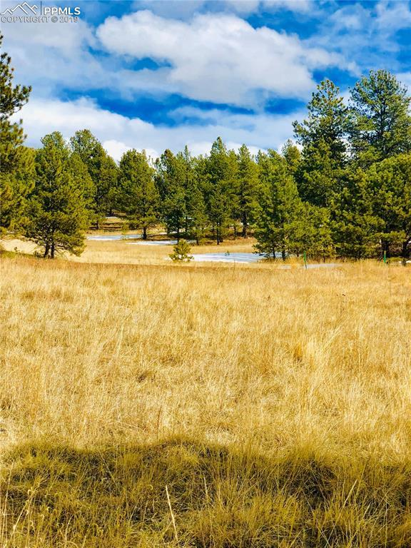 351 Apache Trail, Florissant, CO 80816 (#2051546) :: The Treasure Davis Team