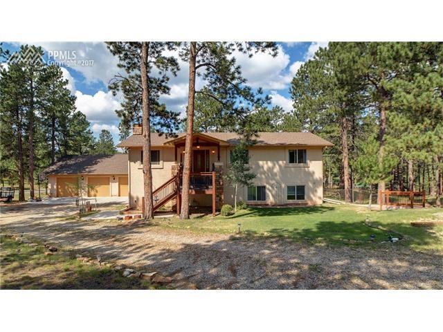 1350 Chippewa Trail, Woodland Park, CO 80863 (#2095360) :: Jason Daniels & Associates at RE/MAX Millennium
