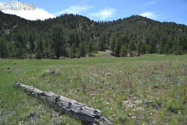 Vista View Road, Guffey, CO 80820 (#2121905) :: The Kibler Group
