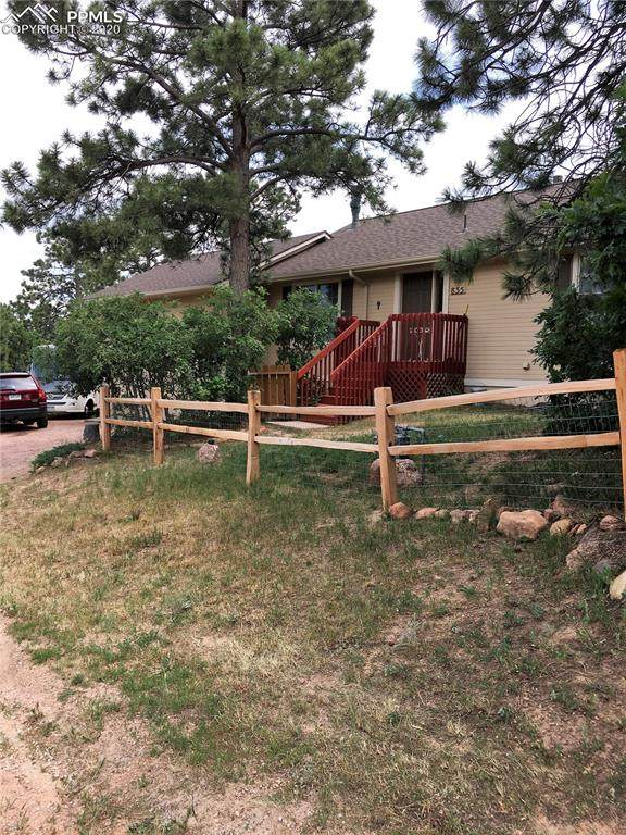 835 Third Street, Palmer Lake, CO 80133 (#2123500) :: Fisk Team, RE/MAX Properties, Inc.