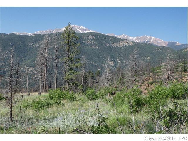 4165 Pyramid Mountain Road, Cascade, CO 80809 (#2164921) :: 8z Real Estate