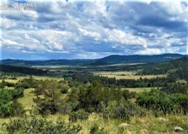 TBD L21 Rosebush Road, Canon City, CO 81212 (#2343282) :: The Treasure Davis Team